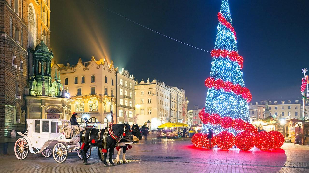 Карета с лошадьми в Новый год в Праге
