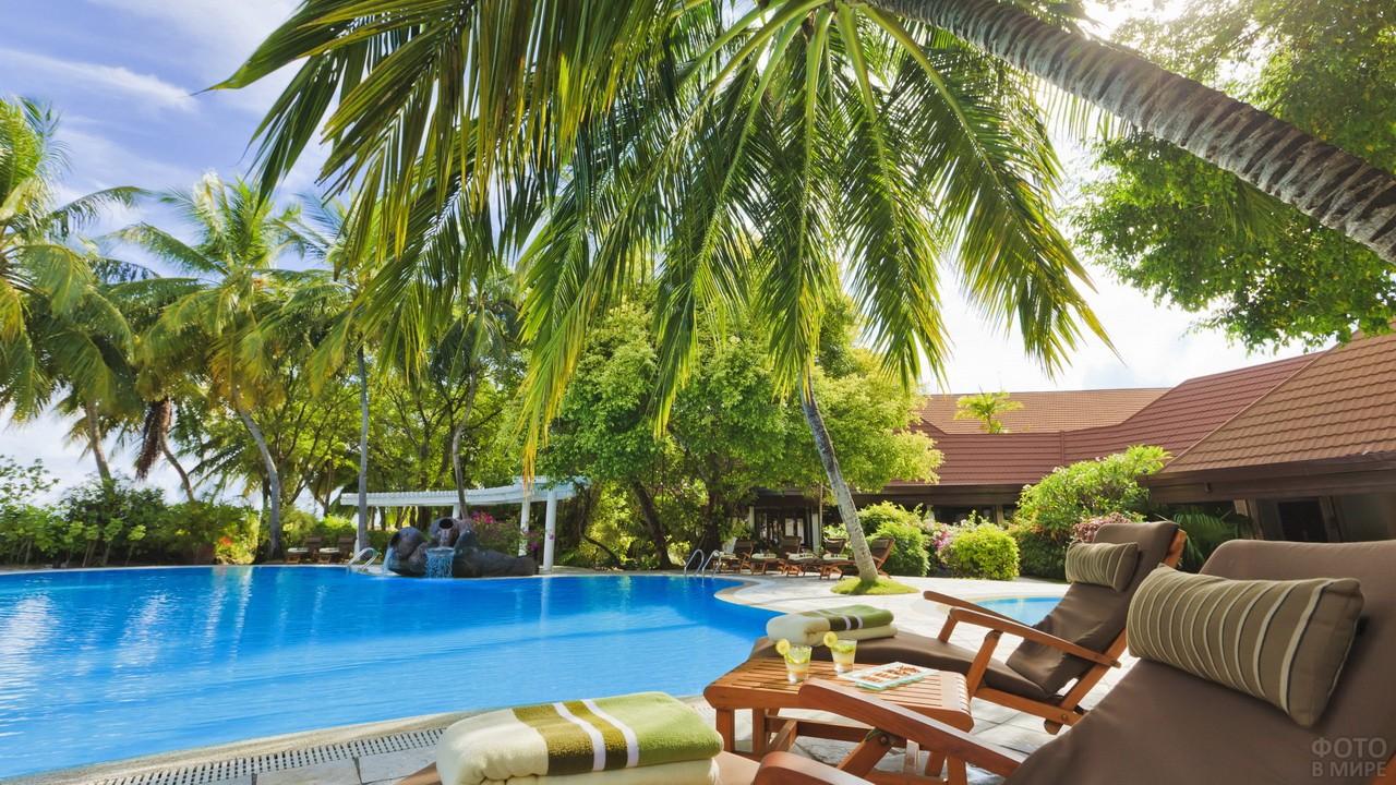 Бассейн среди пальм на пляже отеля