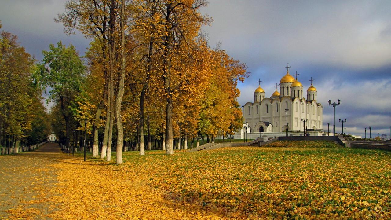 Осенние деревья во Владимире