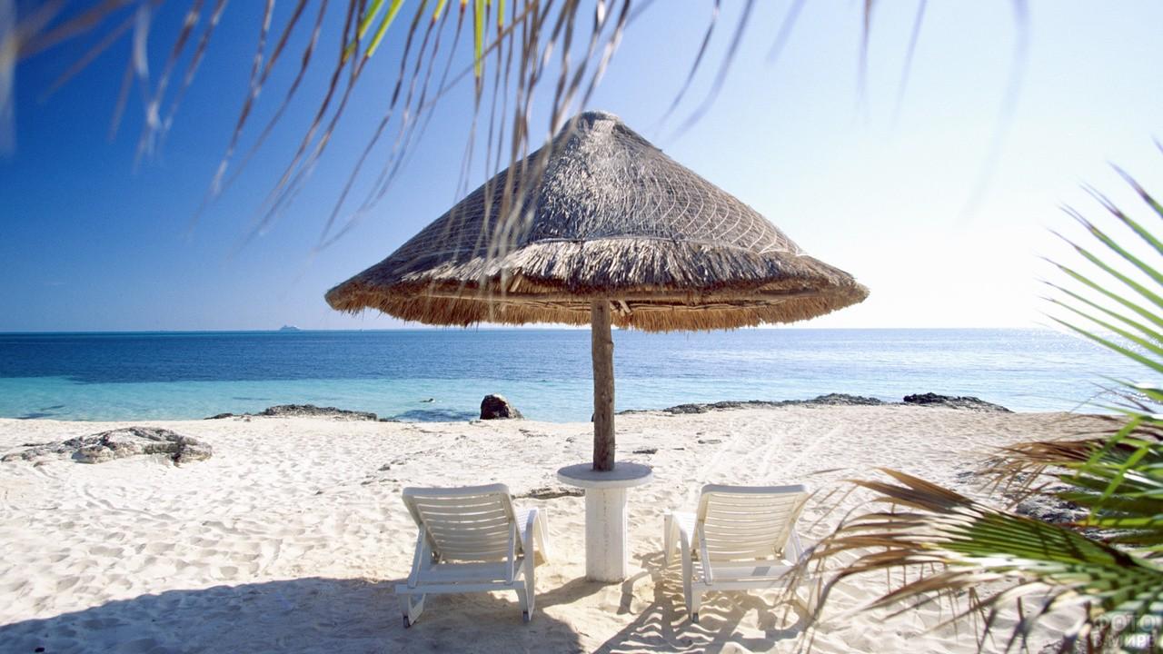 Зонтик из пальмовых листьев на пляже