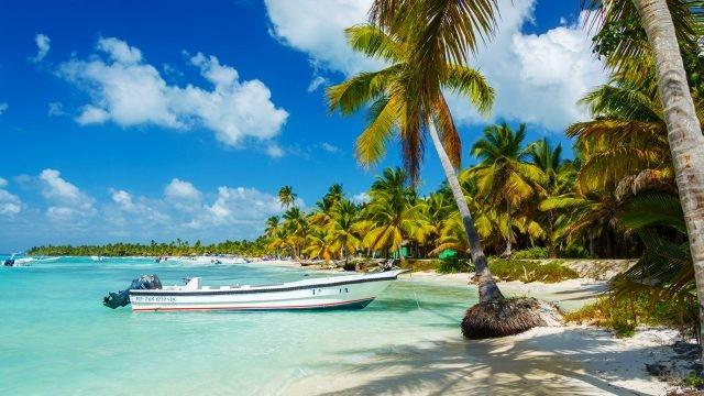 Лодка в тени пальм