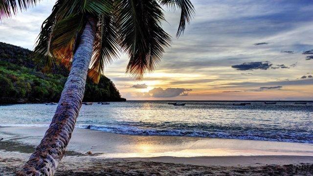 Вечер на острове Мартиника