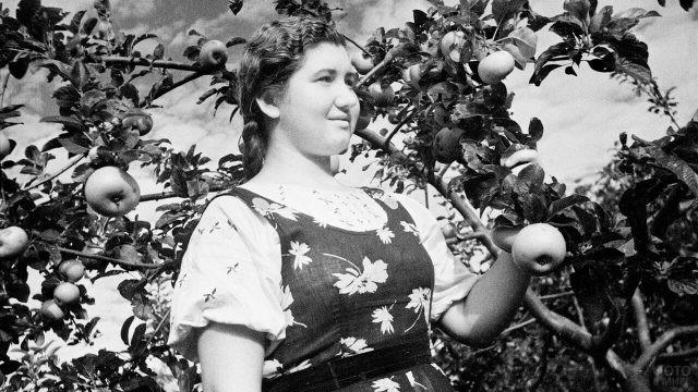Деревенская девушка стоит около яблони