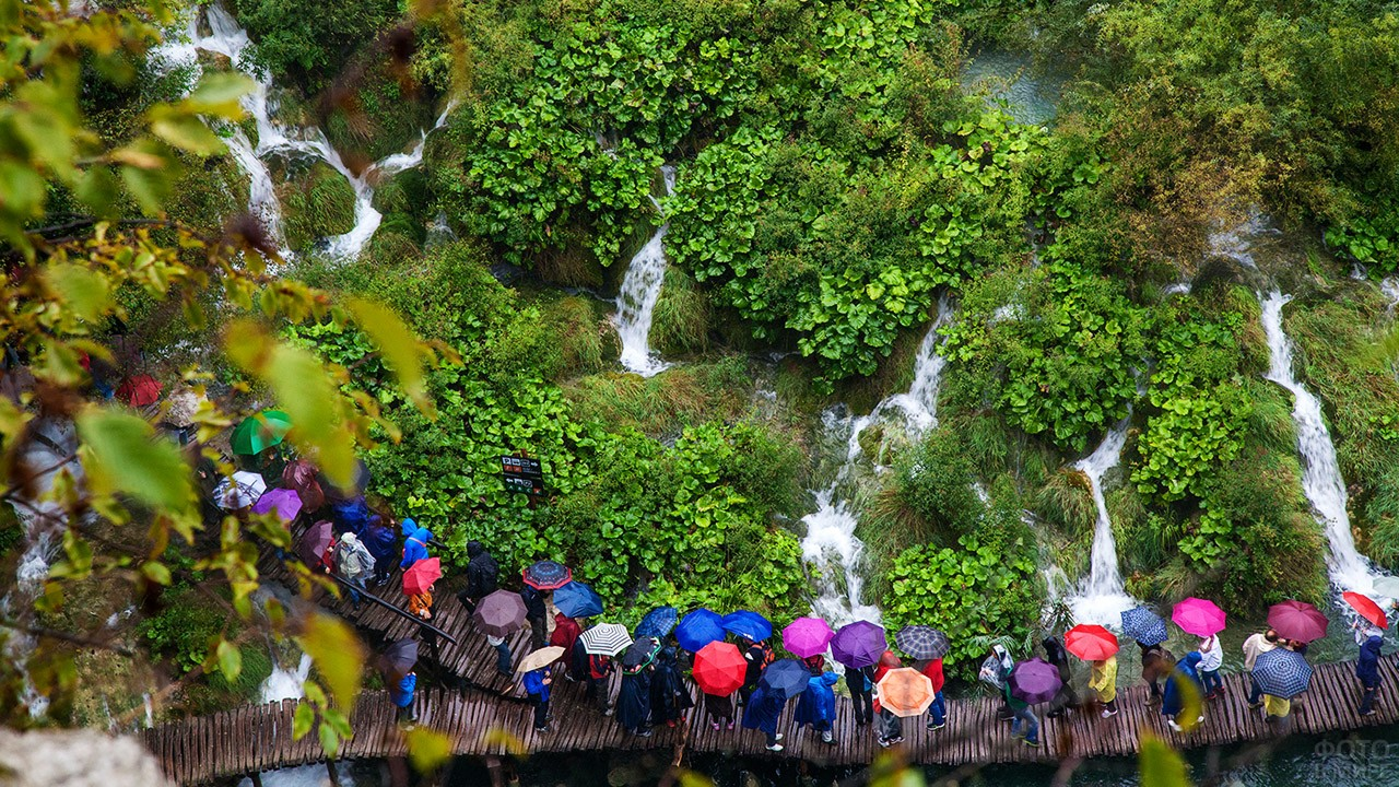 Разноцветные зонтики гуляющих в парке туристов