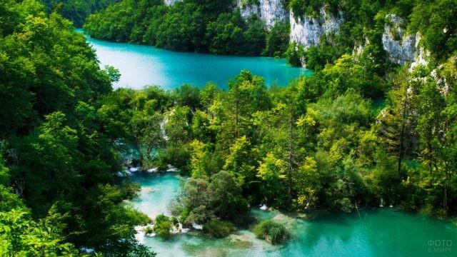 Самовосстанавливающаяся флора национального парка