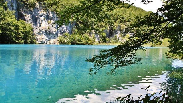 Тенистая зелень над бирюзой озера