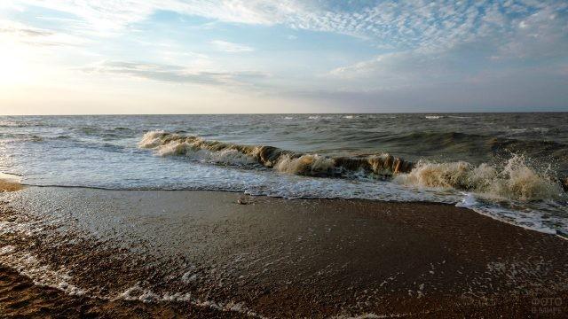 Волны Таганрогского залива