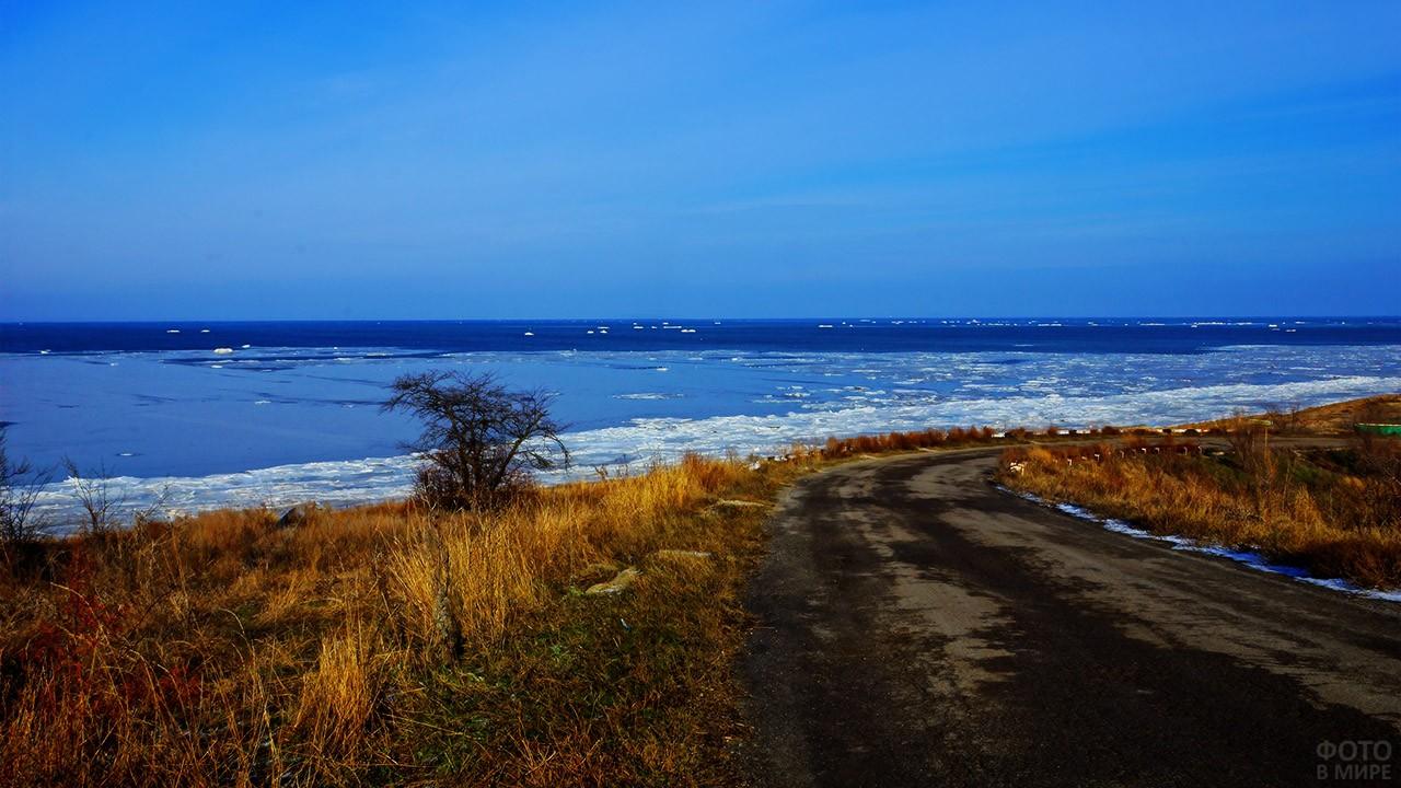 Зима в Ростовской области