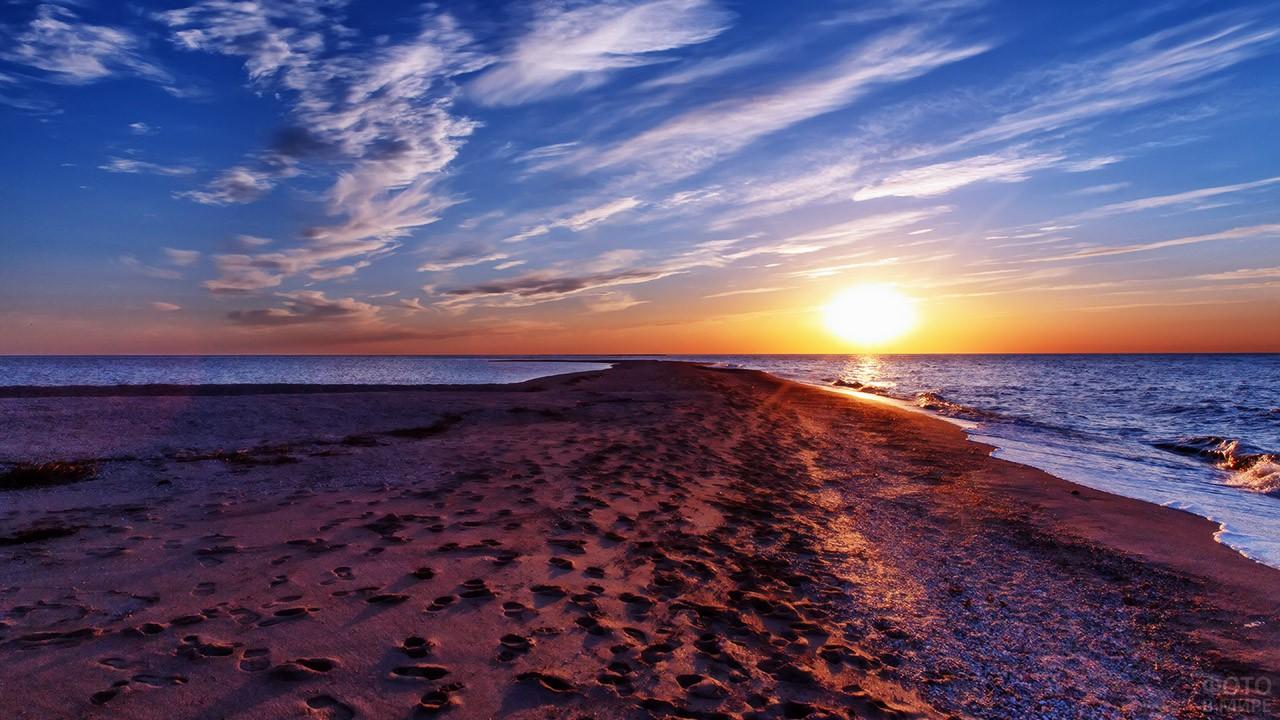 передается азовское море фотографии пляжа пушистый енот