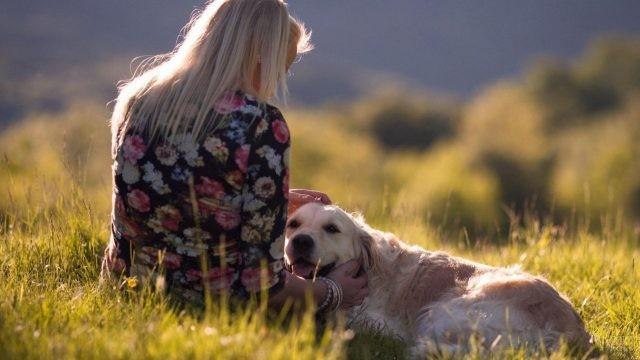 Блондинка сидит на траве с собакой