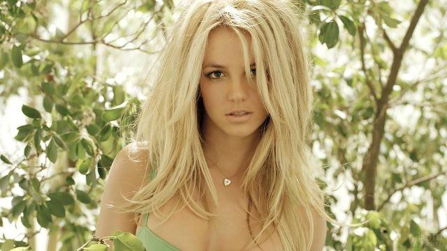 Блондинка на фоне дерева