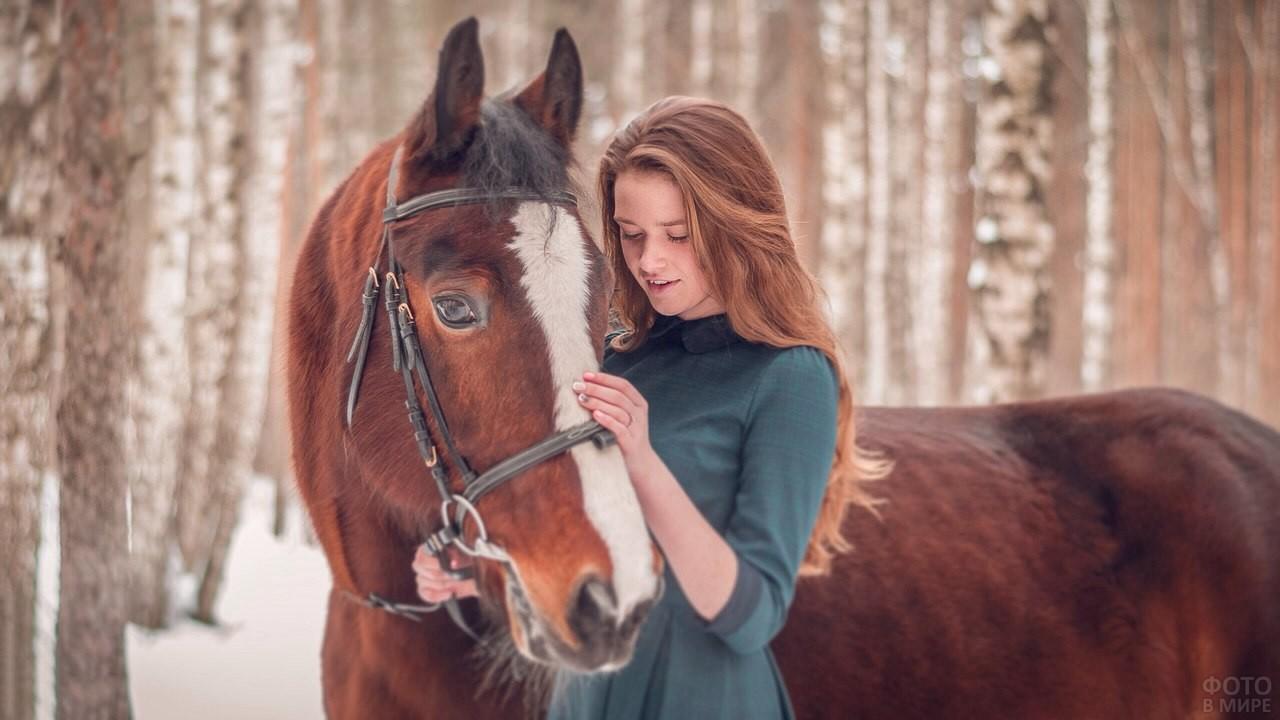 Девушка гладит лошадь