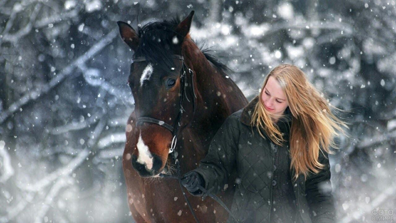 Девушка ведёт коня под уздцы