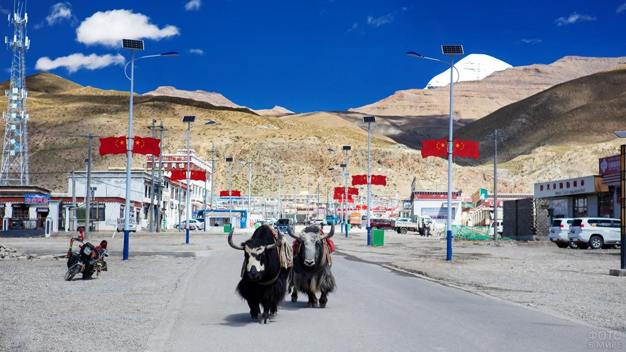 Улица экзотичного посёлка Дарчен у подножья горы Кангрибоче