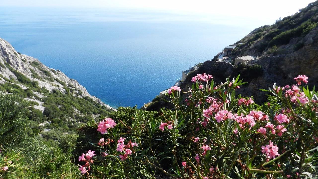 Цветущий берег Удела Богородицы