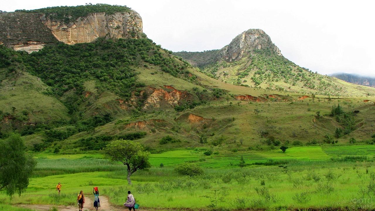 Вид на Марумукутру - самую высокую гору Мадагаскара