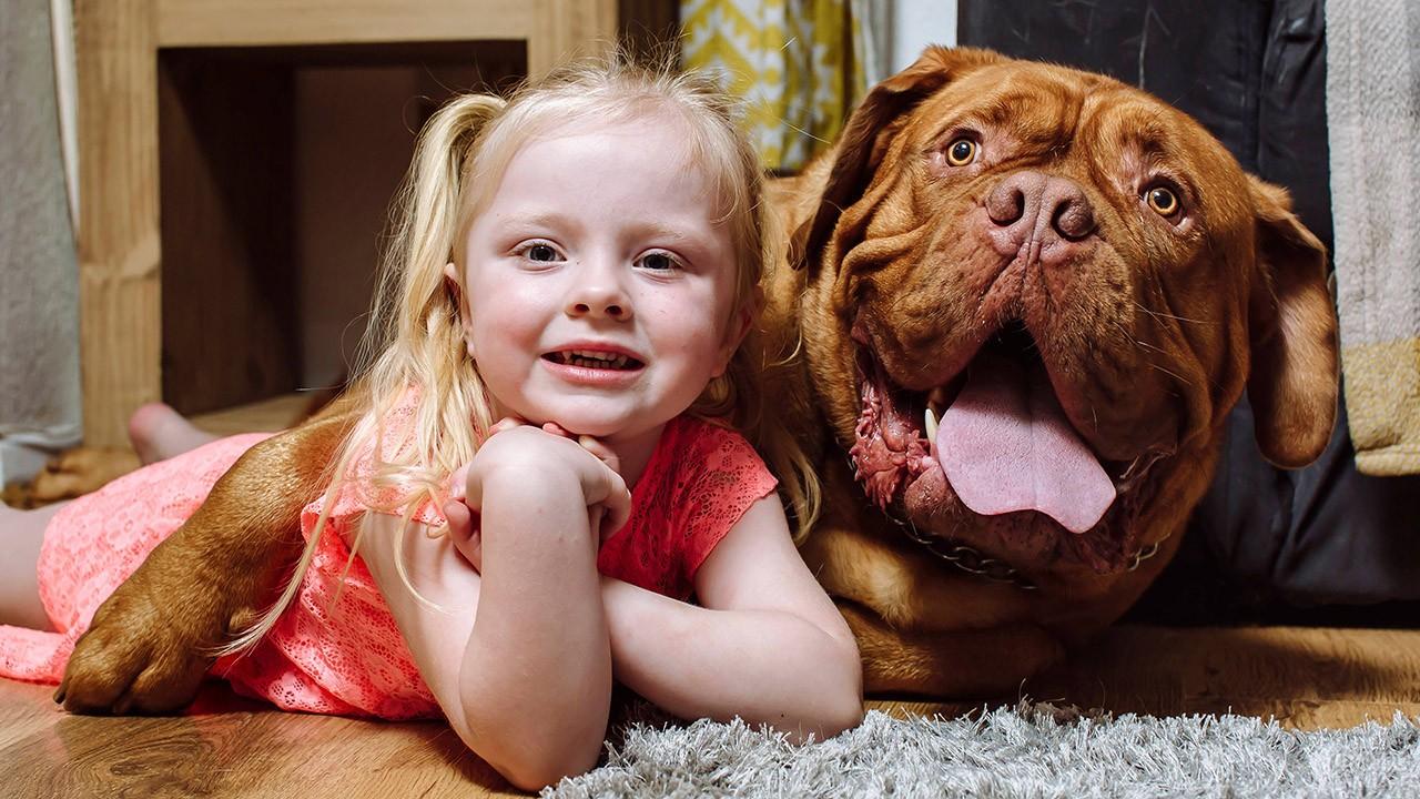 Девочка в обнимку с гигантским псом