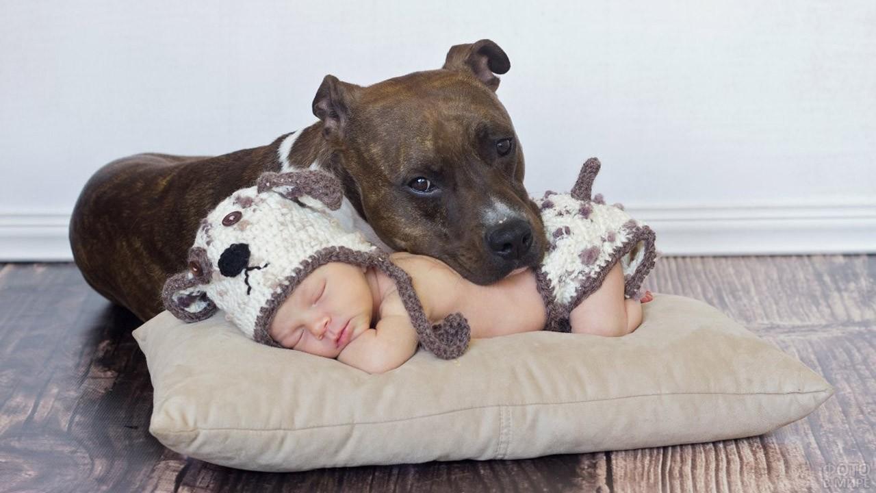 Собака охраняет сон малыша