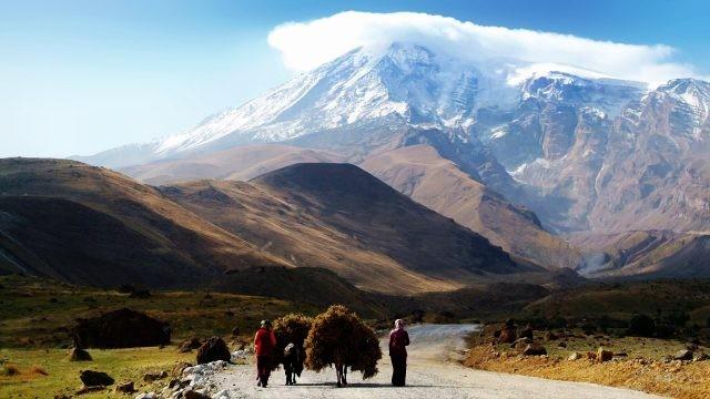 Турецкая семья с навьюченными осликами идут по дороге