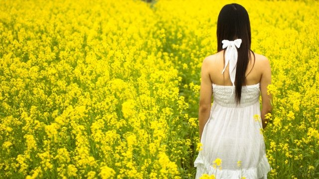 Девушка среди жёлтых цветов