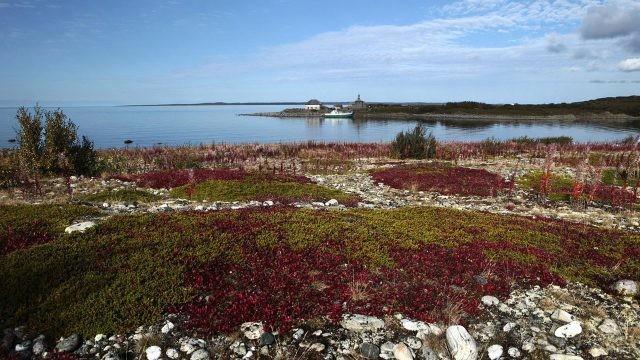 Ранняя осень на острове Заяцкий