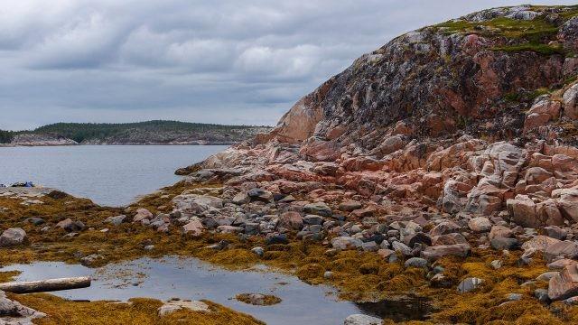Скалистый берег острова в Белом море