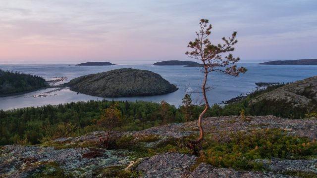 Вид с холма на острове Русский Кузов