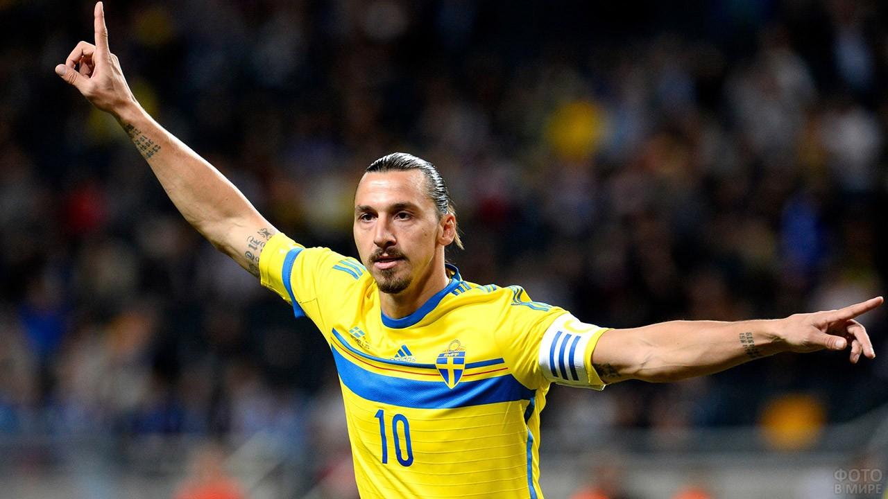 Златан Ибрагимович в сборной Швеции