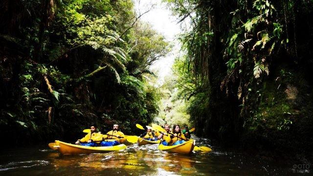 Каякинг по реке Уаикато