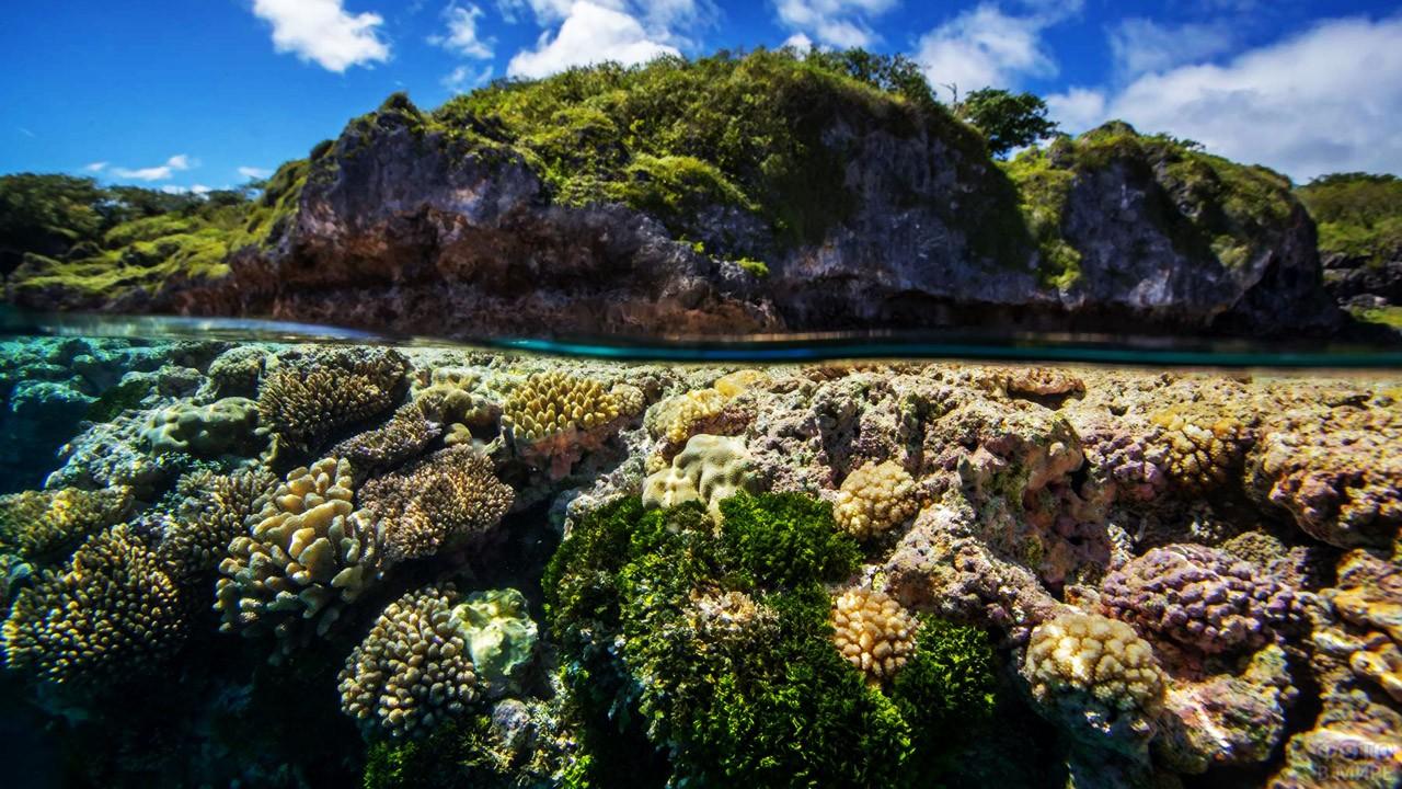 Коралловый атолл острова Ниуэ