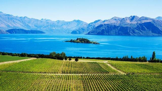 Поля и горы на берегах озера Ванака