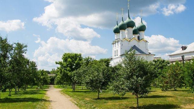 Деревья в Ростовском Кремле
