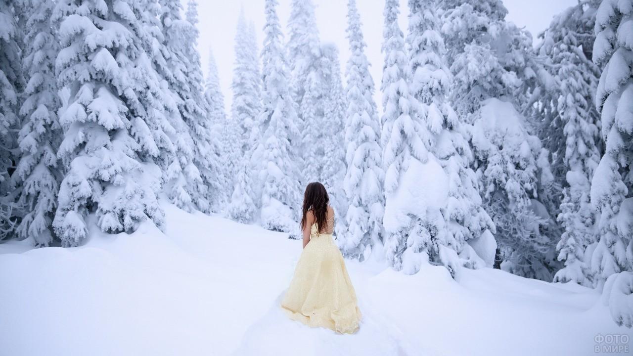 Девушка в белом платье смотрит на ели