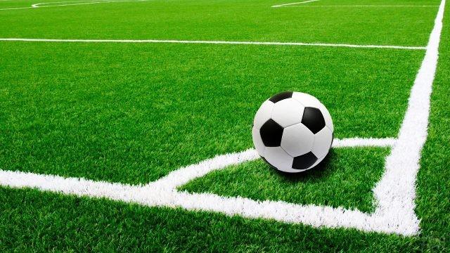 Мяч на поле с разметкой