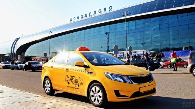 Такси у аэровокзала в солнечный день