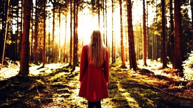 Блондинка в красном пальто в залитом солнцем лесу