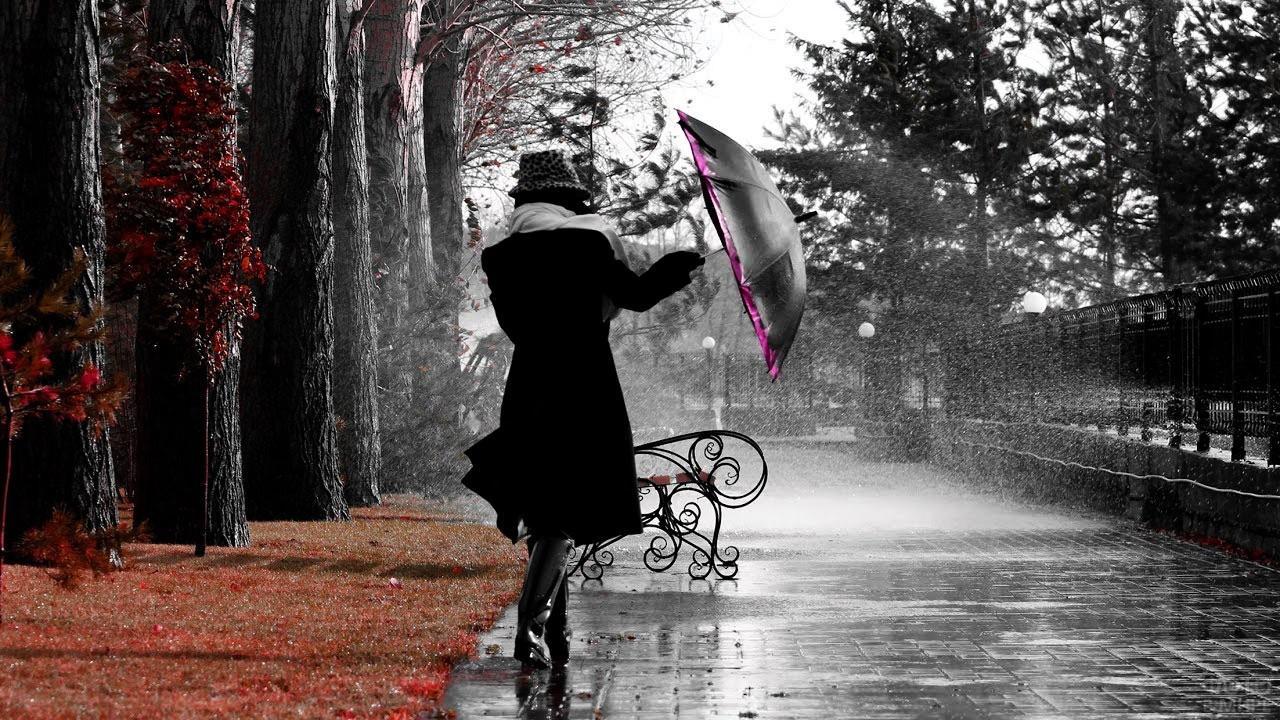 Порывы ветра вырывают зонтик из рук