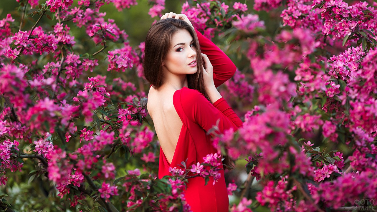 Девушка на фоне цветущего дерева
