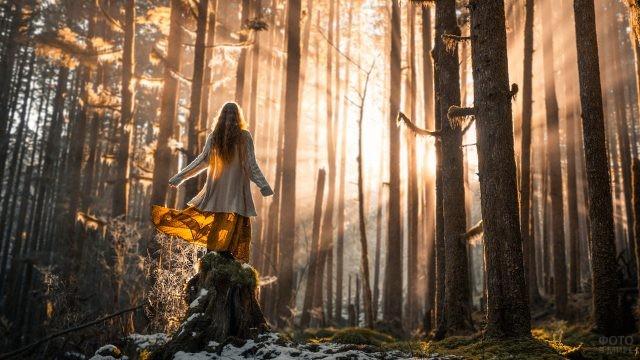 Девушка стоит на пне в лесу