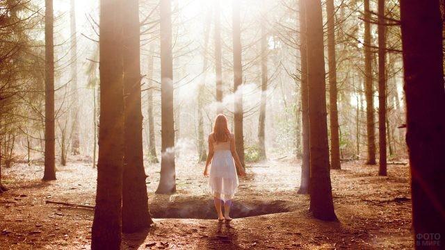 Девушка в прозрачном платье в лесу