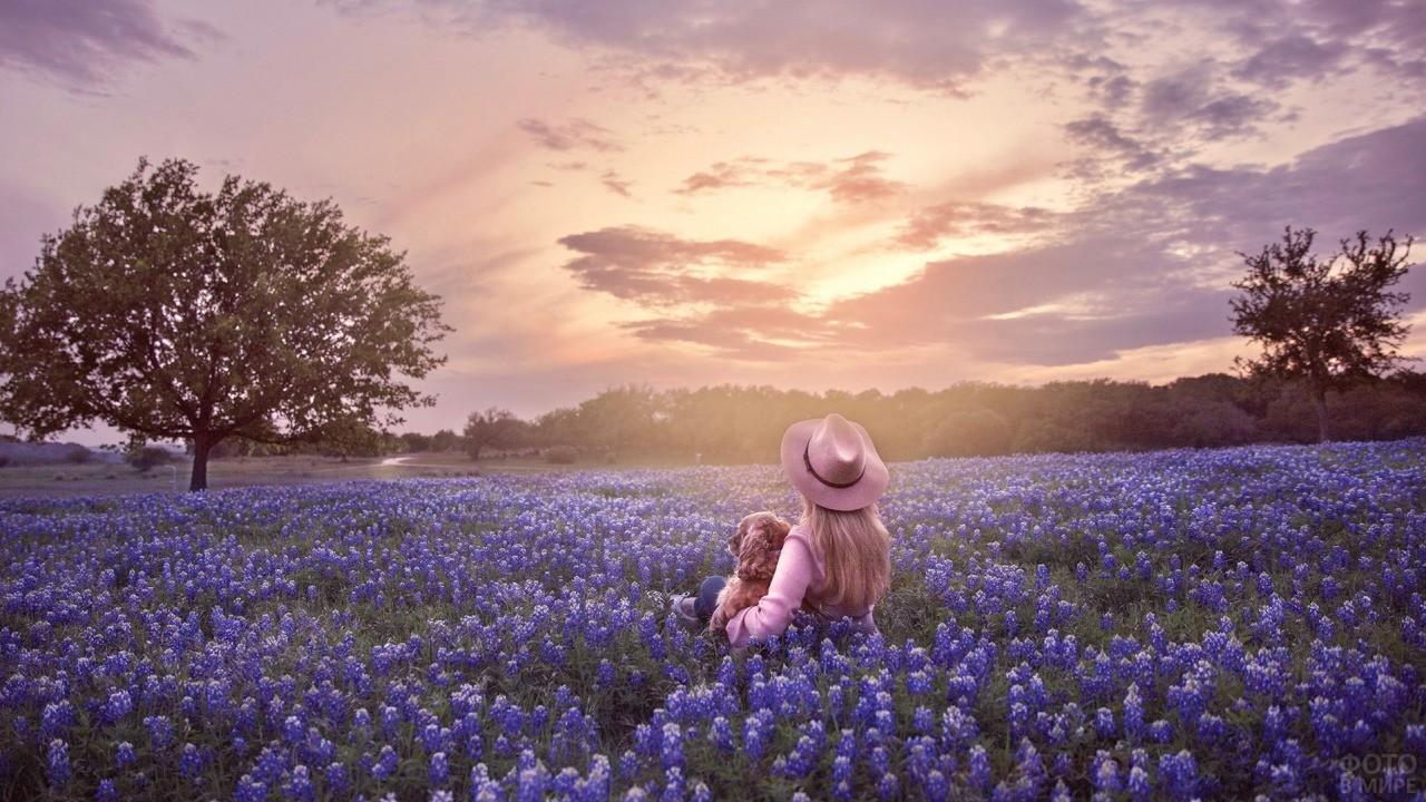 Девушка в шляпе с собакой посреди цветущего луга