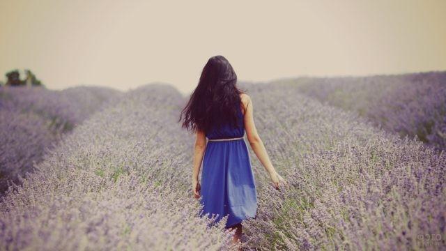 Девушка в синем платье среди лавандового поля