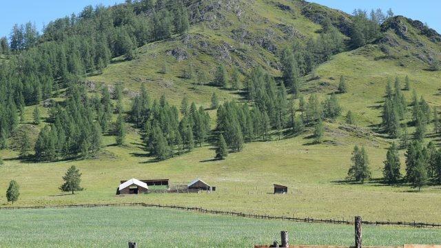 Фермерское хозяйство у подножия горы