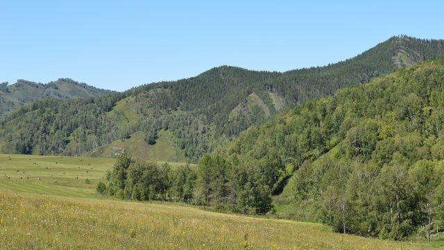 Горы в Солонешенском районе