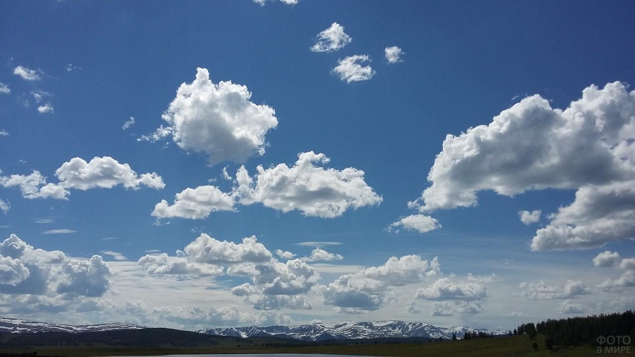 Небо на Алтае